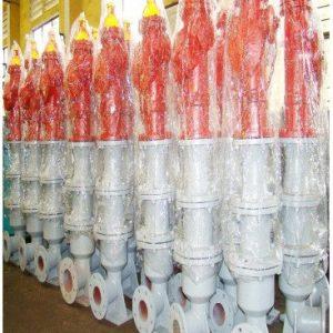 Trụ nước chữa cháy Z183 DN100